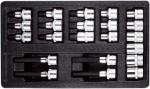 Набор головок TORX внутрениий и внешний, 22 предмета в ложементе